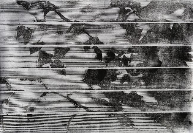 Shadows Through the Blinds Woodcut Fine Art Print